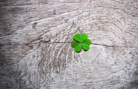 Fresh green clover leaves over wooden background, lucky shamrock, St Patrick Stock Photo - 26002602