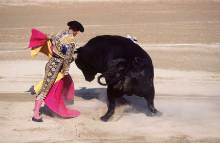 corrida de toros: Corrida de toros