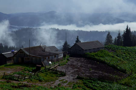 wooden hut in the Carpathian Mountains raises fog