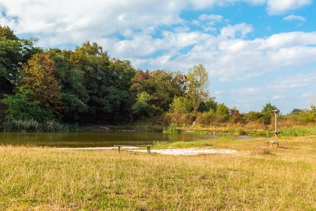 fall landscape: Bench by lake in early fall at park in Lviv, beautiful landscape, Ukraine