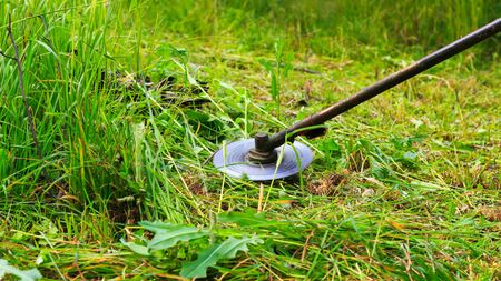 trimmer: Mowing weeds in garden to petrol trimmer, close-up Stock Photo