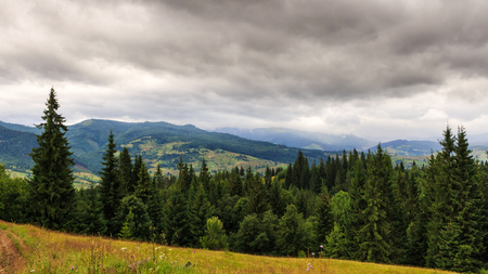 Cloudy summer Carpathian mountains landscape. Chornogora ridge, Ukraine, Europe