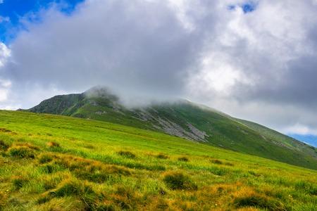 beautiful location: Picturesque Carpathian mountains, nature landscape in summer, Ukraine Stock Photo
