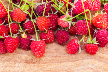 luscious: Freshly picked raspberries with leaf on wooden board, blurred background, selective focus