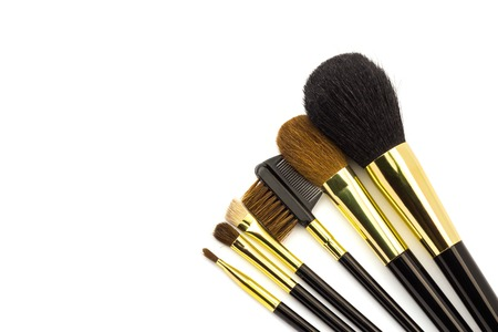 Professional cosmetic brushes for makeup isolated on white background