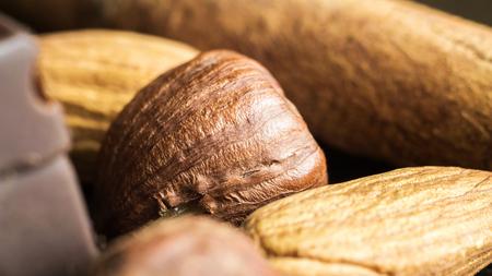 Raw brown hazelnut on heap, macro image.