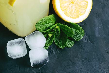 Lemon halves, ice cube and mint on a dark background. Stock Photo