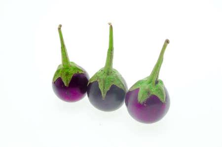 aubergine violet  on a white background. photo