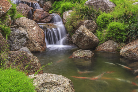 Small waterfall in Bukit Tinggi, Pahang, Malaysia