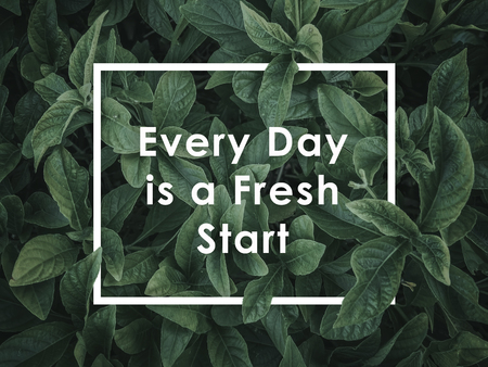 Leaf texture background with Lettering quotes motivation for life and happiness. Morning motivational quote design - Every Day is a Fresh Start Stok Fotoğraf