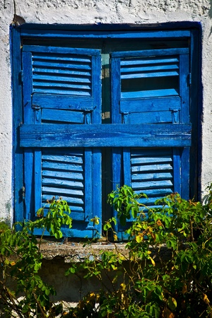 Achient blue window in a white house with roses in Sarti, Greece photo