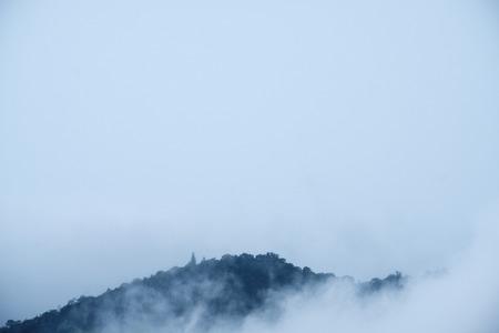 Closeup image of dense fog cover a tropical rainforest