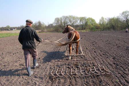 Campesino en el trabajo, arando la tierra.  Foto de archivo - 843125