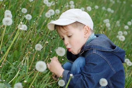 blowing dandelion: ragazzino che soffia dandelion