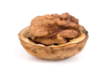 Walnuts isolated on a white background Stock Photo - 4425221