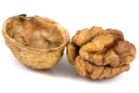 Walnuts isolated on a white background Stock Photo - 5198058