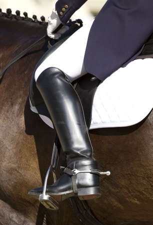 dressage horse and rider  Foto de archivo