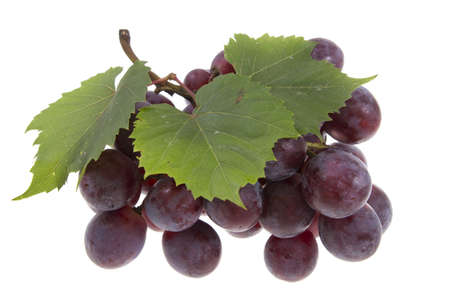 grapes on vine: grape with leaves isolated on white