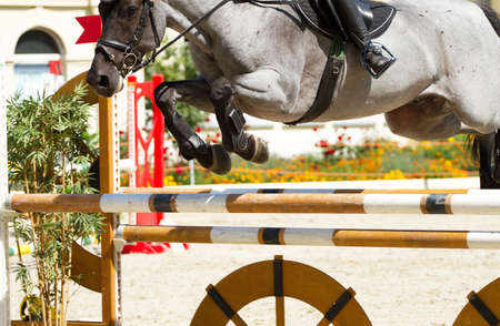 equestrian show jumping photo