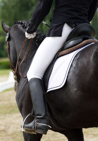Dressage horse view from behind Stock Photo