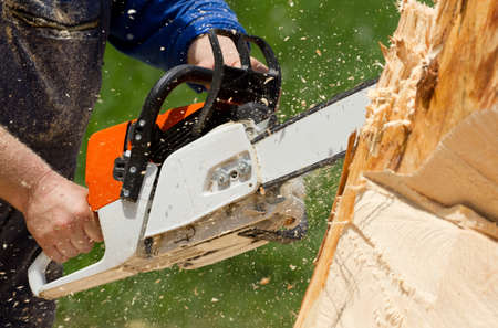 Man with chainsaw cutting the tree Stock Photo - 20237622
