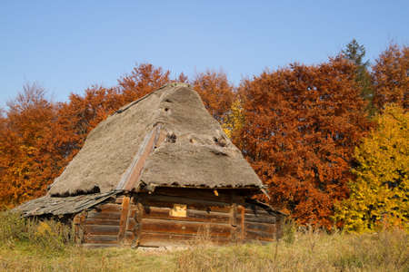 thatched house: Old house with a thatched roof in autumn Stock Photo