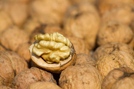 Walnuts pile on  background texture photo