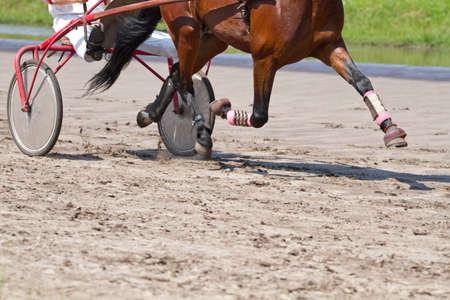hippodrome: Rider on a horse race on hippodrome