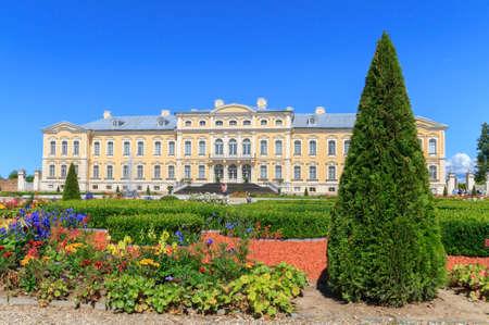 Pilsrundale, Latvia - July 19, 2016:Beautiful cone tree in Rundale park , Latvia.Rundale Palace is one of the most popular landmarks of Latvia .