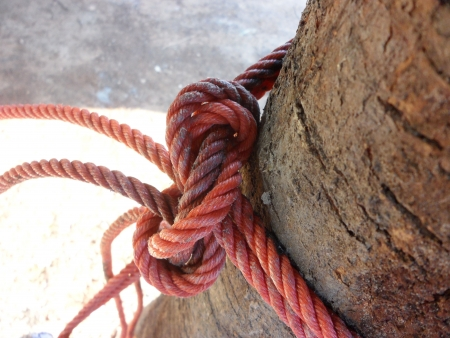 Knot red rope
