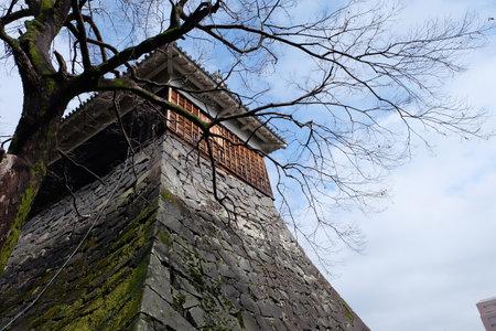 Kumamoto castle 新闻类图片