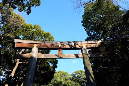 harajuku: Meiji jingu