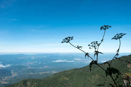 North Thailand Mountains