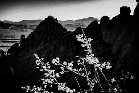 Superstition Mountains Black&White A Banco de Imagens