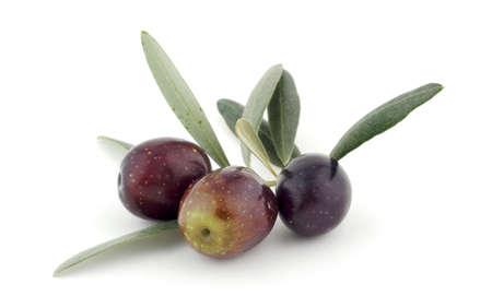 hoja de olivo: Aceitunas con hojas