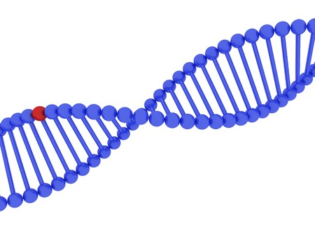 3d render of DNA on white background Stock Photo - 4492075