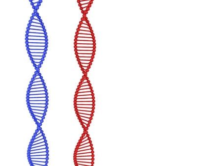 3d render of DNA on white background Stock Photo - 4492074