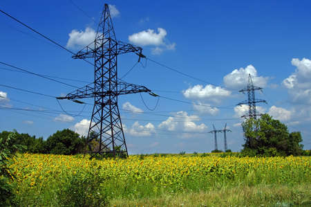 High-voltage wires are placed over a field of sunflowers Stock Photo