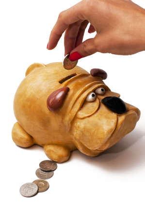 Person putting a coin in a piggy bank  Stock Photo