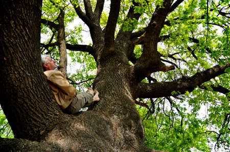 The elderly man is lying has a rest on a big tree