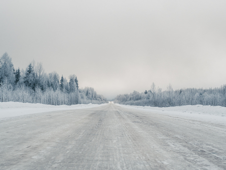 Winter road through the wild forest. Cloudy sky and trees in the snow. Copyspace for text.
