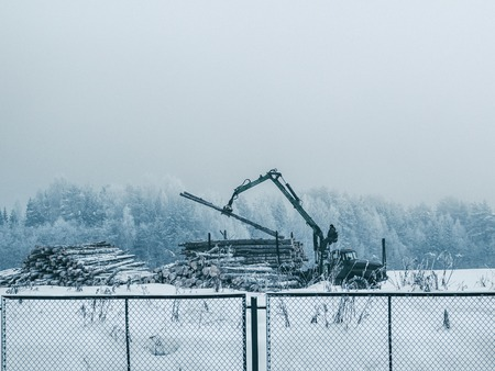 Timber carrier loads logs in the north of Russia. Wild forest is on the background with whhite snow and clody sky. Copyspace for text.