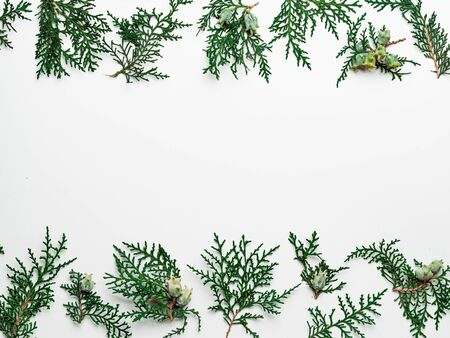 Minimal Christmas pattern with copy space. Fir tree or cypress branches on white background. Negative space for text or design in center. Christmas, winter, new year concept. Flat lay, top view 版權商用圖片
