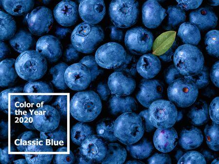Schöner Blaubeerhintergrund in der Farbe des Jahres 2020 Classic Blue. Blaubeeren mit grünem Blatt. Ansicht von oben oder flach. Kopieren Sie Platz für Text. Farbe des Jahres 2020 Classic Blue.