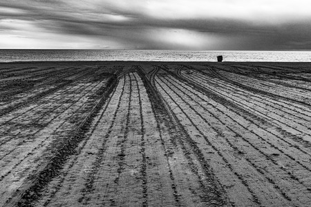 geometries drawn on the sand by a tractor at dawn