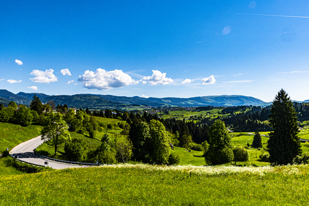 first days of spring they heat the meadows on the Asiago plateau, with the melettes in the background and the ossuary in the distance