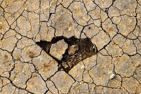 clods of red earth dried up by the lack of water create furrows like wounds
