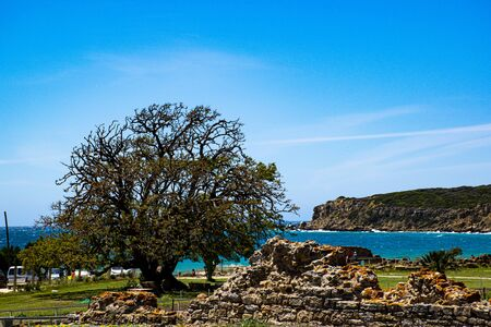 beautiful ocean with an old tree and Roman ruins in Bolonia Spain