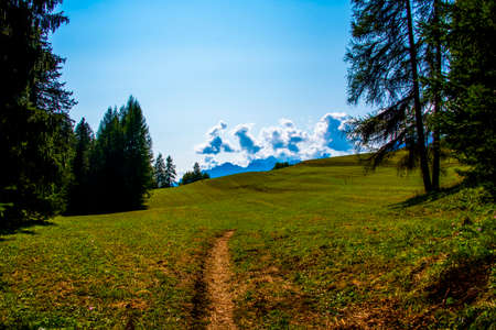 path among the green meadows with the dolomites as background in Cortina D'Ampezzo, Belluno, Italy Banco de Imagens