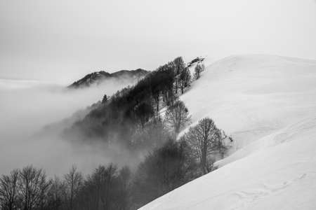 horizon of the Venetian plain immersed in clouds between fog and snow with snowy trees and snowy Alpine peaks on a winter day in Recoaro Mille, Vicenza, Italy